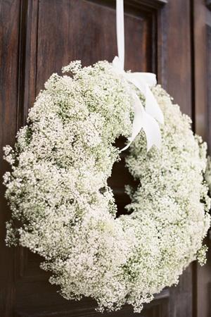 Flower Of The Week Echelon Florist